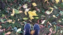 My walking shoes and the colorful leaves (signature pose!)